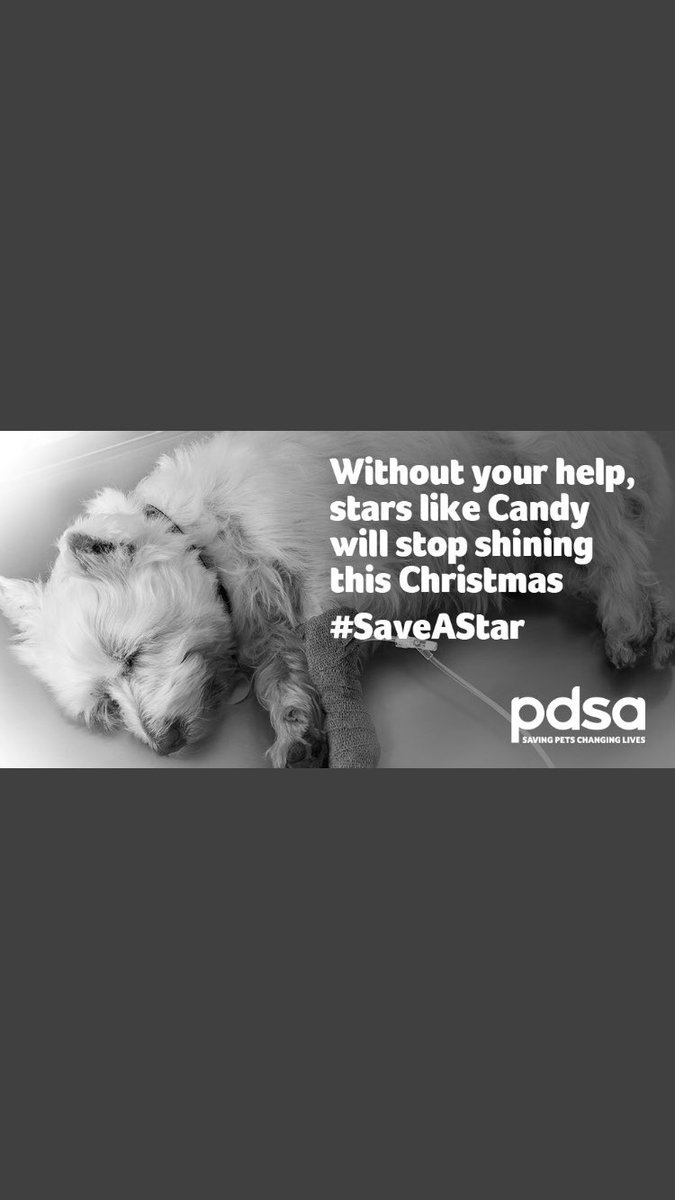 When a beloved pet gets sick at Christmas, @PDSA_HQ is often their only hope. Support PDSA today to help a pet in need and #SaveAStar in someone's life: bit.ly/2r8xrIj