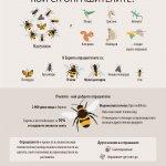 Image for the Tweet beginning: Какво убива пчелите и другите