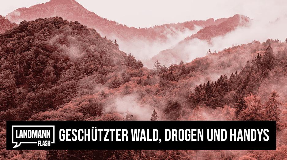 "Valentin Landmann über das Thema ""Geschützter Wald, Drogen und Handys""  @V_Landmann  https://t.co/xG5XbbGSaf     #LandmannFlash #ValentinLandmann #Politik #Schweiz https://t.co/CfQY4m73vB"