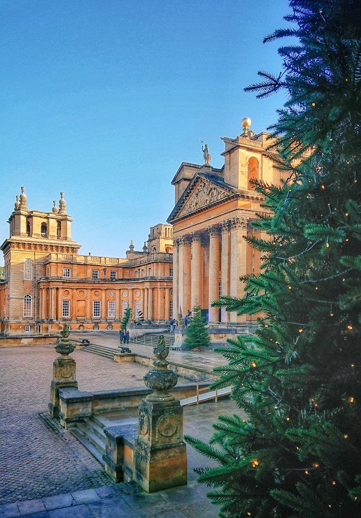 Beautiful #Blenheim! #christmas #festiveseason @BlenheimPalace #aliceinthepalace