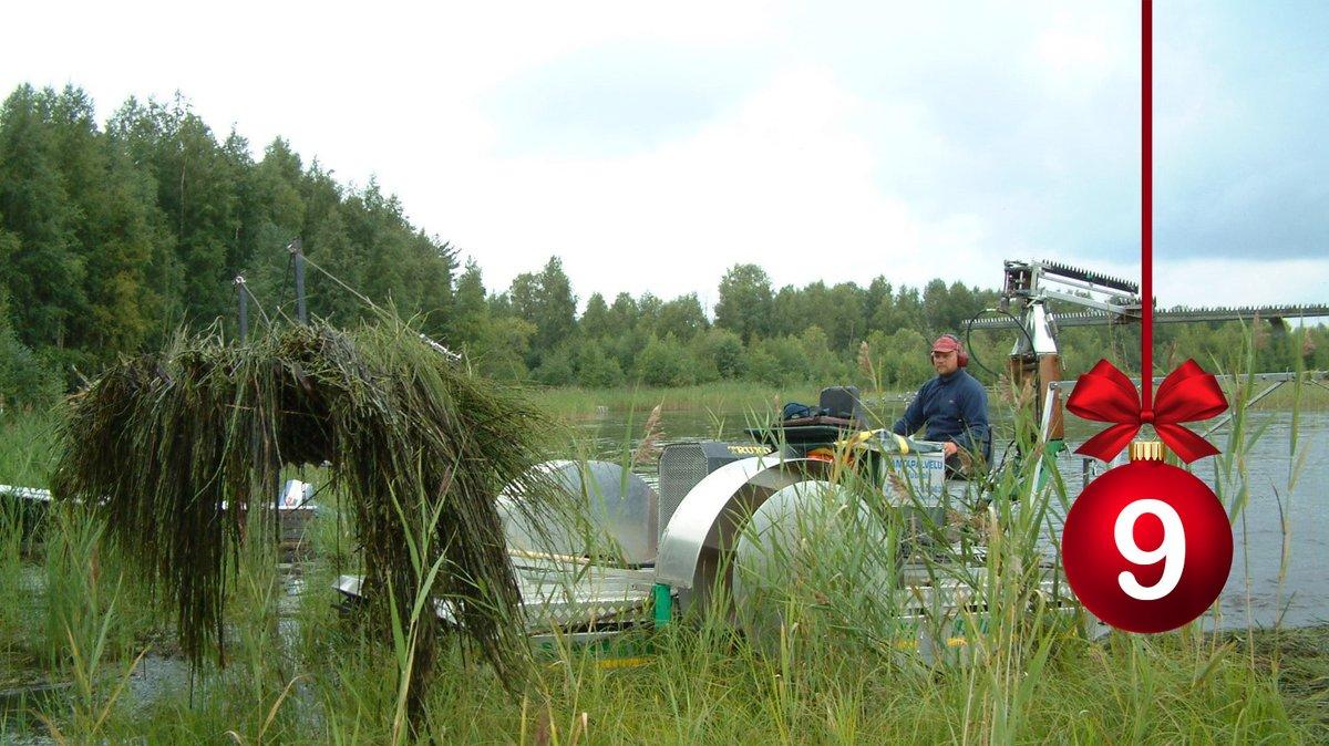 #HELYnteri luukku 9: Mitä kuvassa tapahtuu?   A) Vesikasvien niitto  B) Kanta-Hämeessä korjataan riisisatoa C) AIV-rehun tekoa https://t.co/UjRcjRiptx
