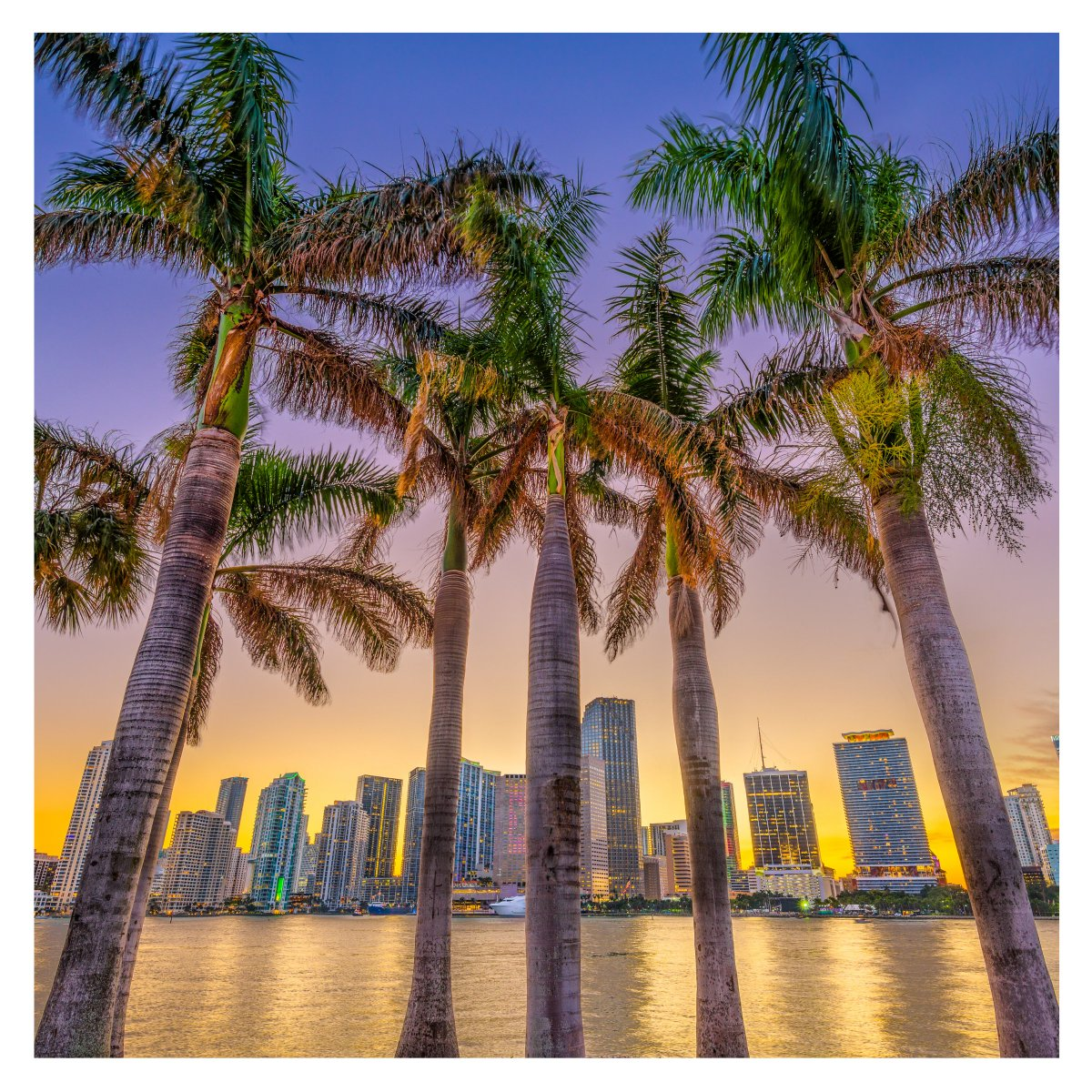 It's #banking as usual, but #better. You can continue to expect the same #GreatService from all of our five #locations throughout #MiamiDade.   (Member FDIC)  Have a question? Reach out to a member of our #team!