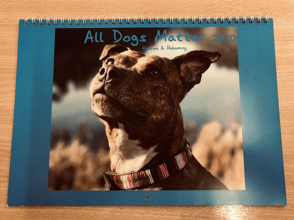 We have a 2020 ADM calendar signed by our brilliant patron @rickygervais up for grabs. We are inviting bids with a reserve of just £25. If youd like to make an offer please email us - info@alldogsmatter.co.uk. The perfect Xmas gift for dog-loving Office / Extras fans! 📆🐾