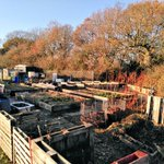 Image for the Tweet beginning: The @Neatherd #school #allotment as