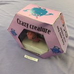 Image for the Tweet beginning: Year 9 crazy creatures project,