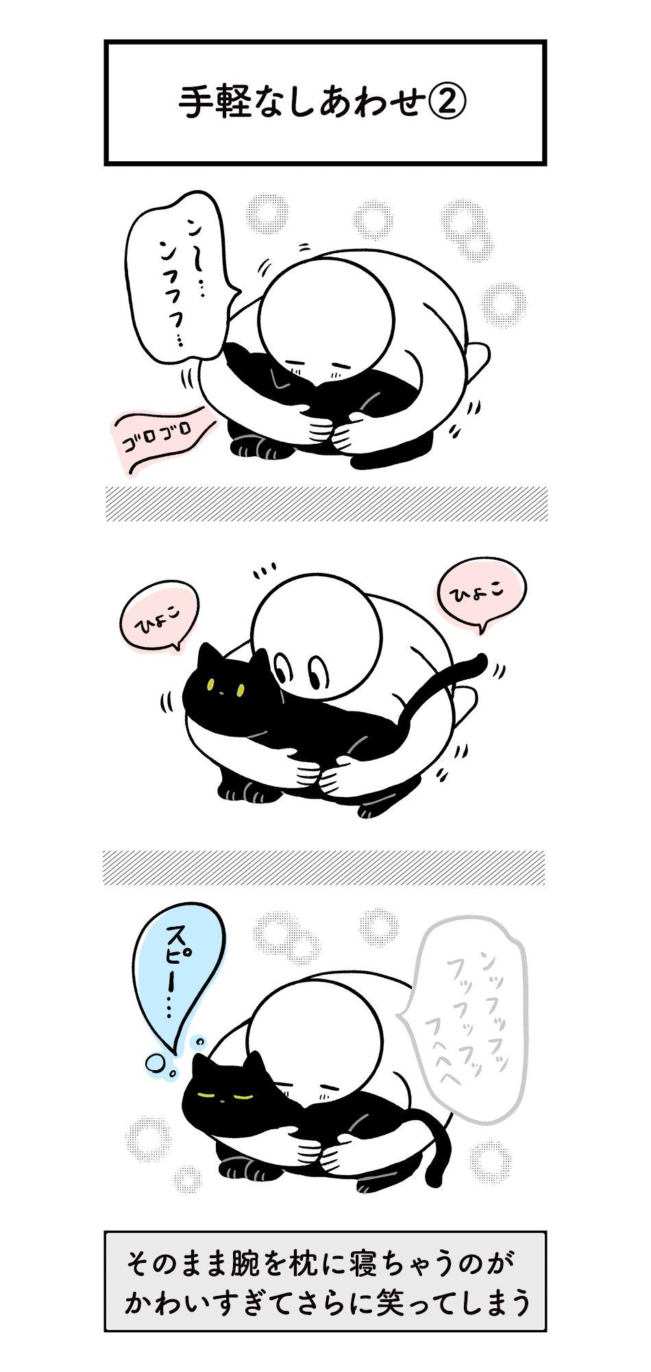 3秒で幸せな気持ちになれる!猫とのスキンシップ