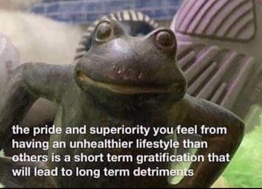 frog the pride and superiority you feel from having  an unhealthier lifestyle than others is a short term gratification that  will lead to long term detriments