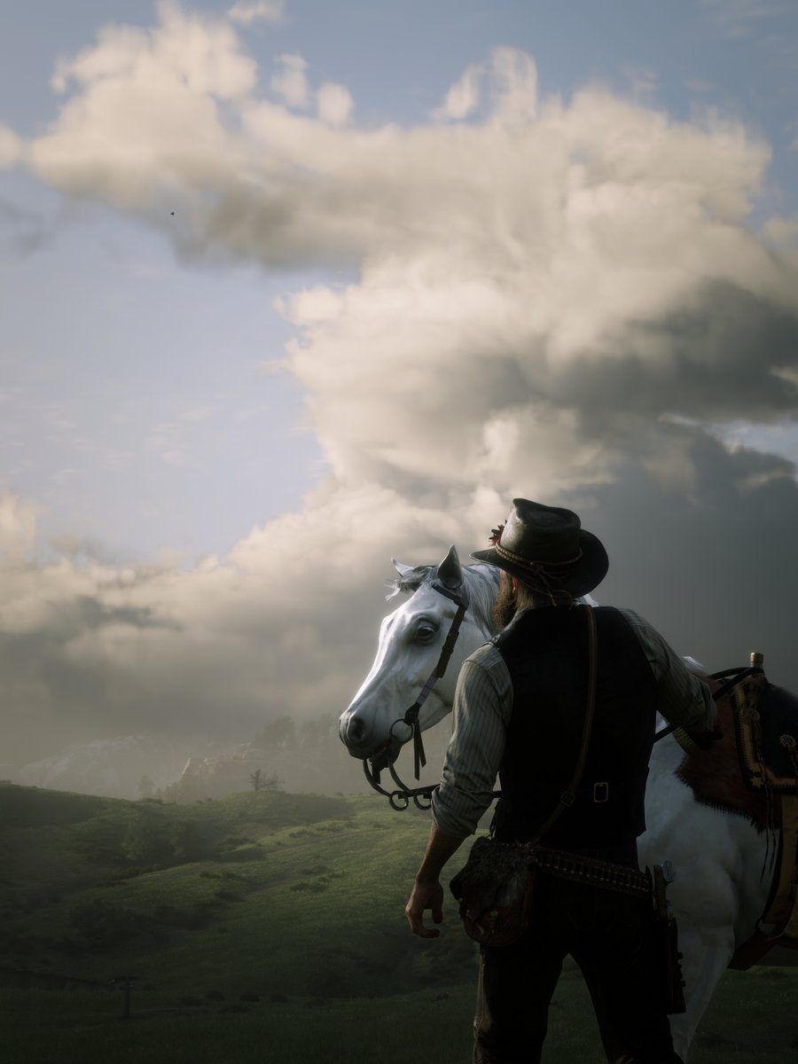 Red Dead Redemption 2 (PC photo mode)