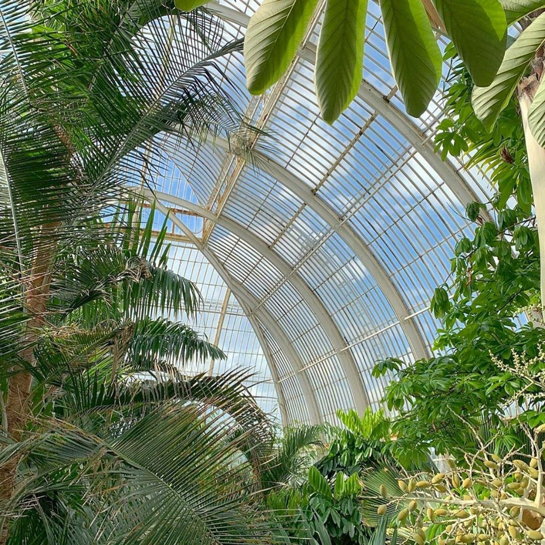 Love knowing that your hair care products are naturally derived? So do we. That's why our bio:renew products are made with real botanicals endorsed by the Royal Botanic Gardens, Kew @kewgardens. Check out the Palm House at Kew! Regram from @kewgardens #HerbalEssences #KewGardens https://t.co/9ZD3DiFtw2