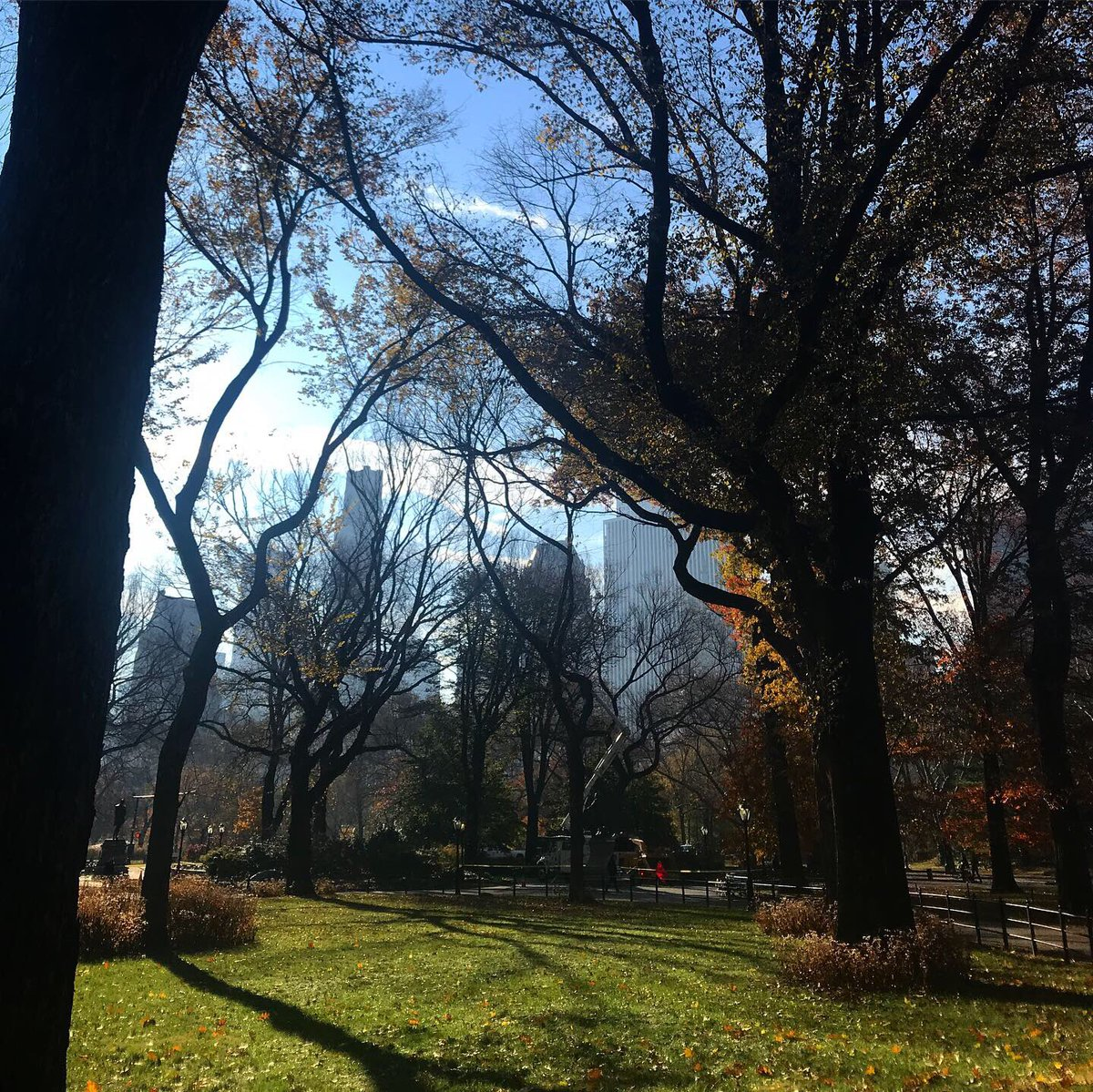 Walk, snap. Walk, snap. Hard not to take pic after pic - there's just so much beautiful on this no-coat-needed November Monday!      * * #centralpark #autumninnewyork #nycphoto #thanksgivingweek #thanksgivinginnyc #novemberweather #travelnyc #travel #outdoorfunpic.twitter.com/Z2ffjXJIGE