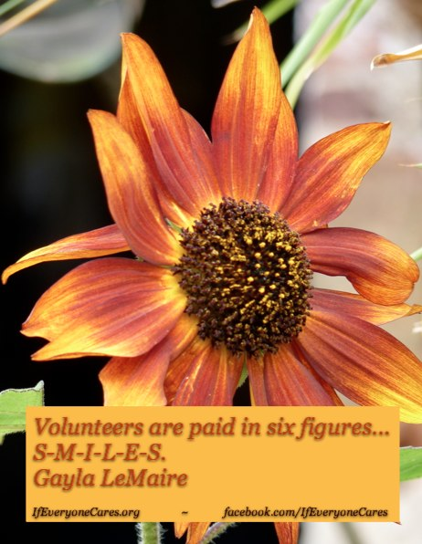 #Volunteers are paid in 6 figures - SMILES - aDoddle.org
