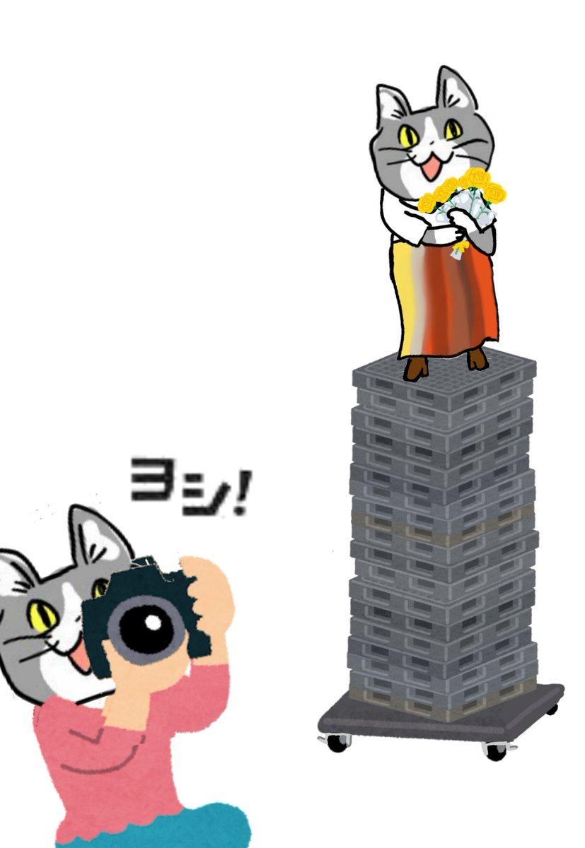 例のアレ 現場猫 https//t.co/DYbcykAMsH