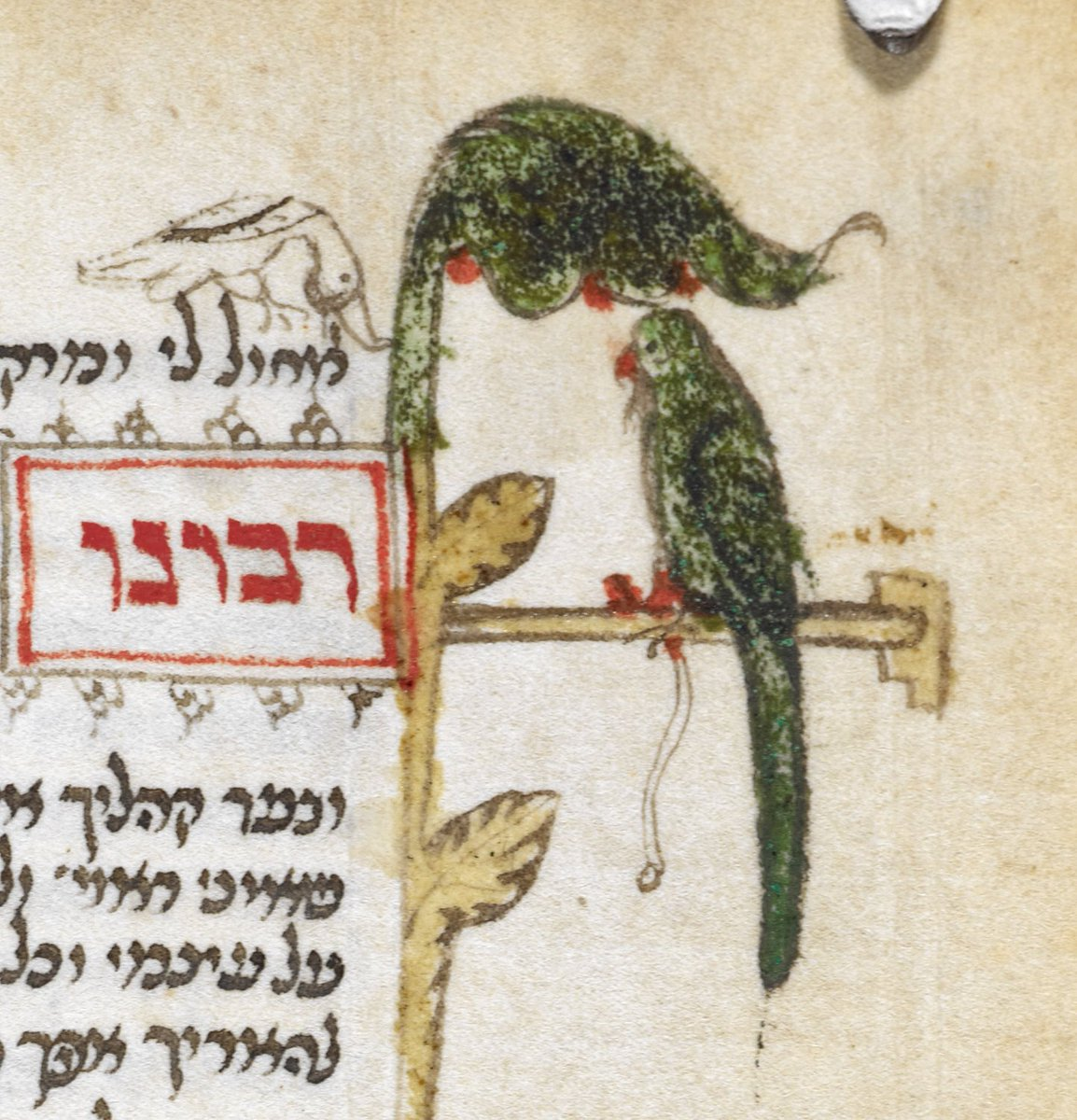 There were dozens of green parakeets in the trees yesterday. A sign that bad weather is approaching?🦜🌳🦜🌳🦜Prayer book, Italian rite (Add MS 26968, f. 279v)Book of Hours, Paris Use (Add MS 29433, f. 192r)http://www.bl.uk/catalogues/illuminatedmanuscripts/record.asp?MSID=19249&CollID=27&NStart=26968 …http://www.bl.uk/catalogues/illuminatedmanuscripts/record.asp?MSID=6773&CollID=27&NStart=29433 …
