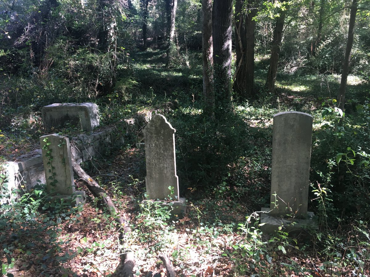 """I'm also the Mellon Fellow in the Digital Humanities and work on """"The Athens Death Project."""" We are using Gospel Pilgrim Cemetery (1882-2003) as a lens into the local black community during Jim Crow. The website will be live soon! #death #cemetery #southernhist #SouthernGothic https://t.co/gnlwkK4D8t"""