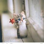 かわいすぎるロシア人の手工芸の猫!