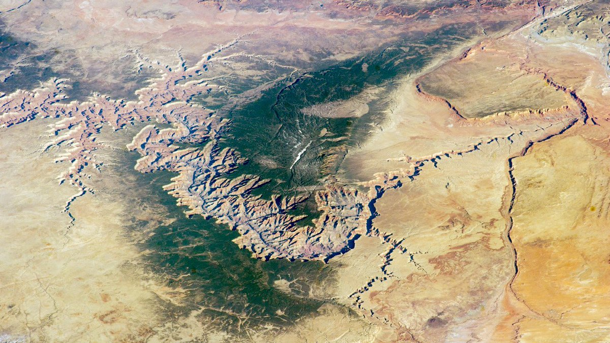 Grand Canyon is in the northwest corner of Arizona, close to the borders of Utah and Nevada. The Colorado River, which flows through the canyon, drains water from 7 states, but the place we know as Grand Canyon is entirely in Arizona. Photo/NASA from International Space Station.