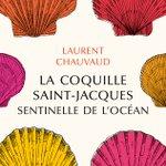"Image for the Tweet beginning: ""La coquille Saint-Jacques, sentinelle de"