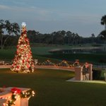 Image for the Tweet beginning: Our Tree Lighting Ceremony is