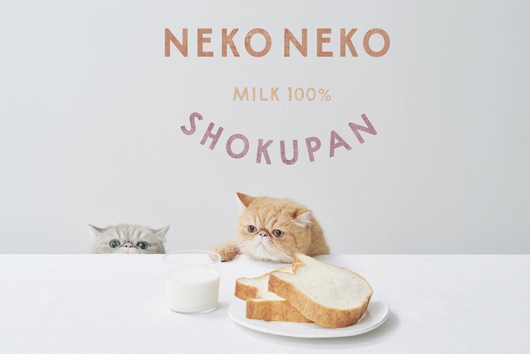 ねこの形の高級食パン専門店「ねこねこ食パン」が東京・静岡に同時オープン!2019年11月29日(金)イトーヨーカドー大森店、静岡パルシェ店が新規オープン。かわいいだけじゃない。おいしさを追求して水分は100%ミルクのみ。国産小麦とたっぷりミルクの本格派。
