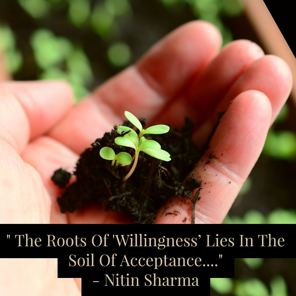 Good morning ! #quotes #quoteoftheday #ThoughtOfTheDay #Wisdom #instaquotes #wisdomquote #FridayFeeling #FridayMotivation #soil #Roots
