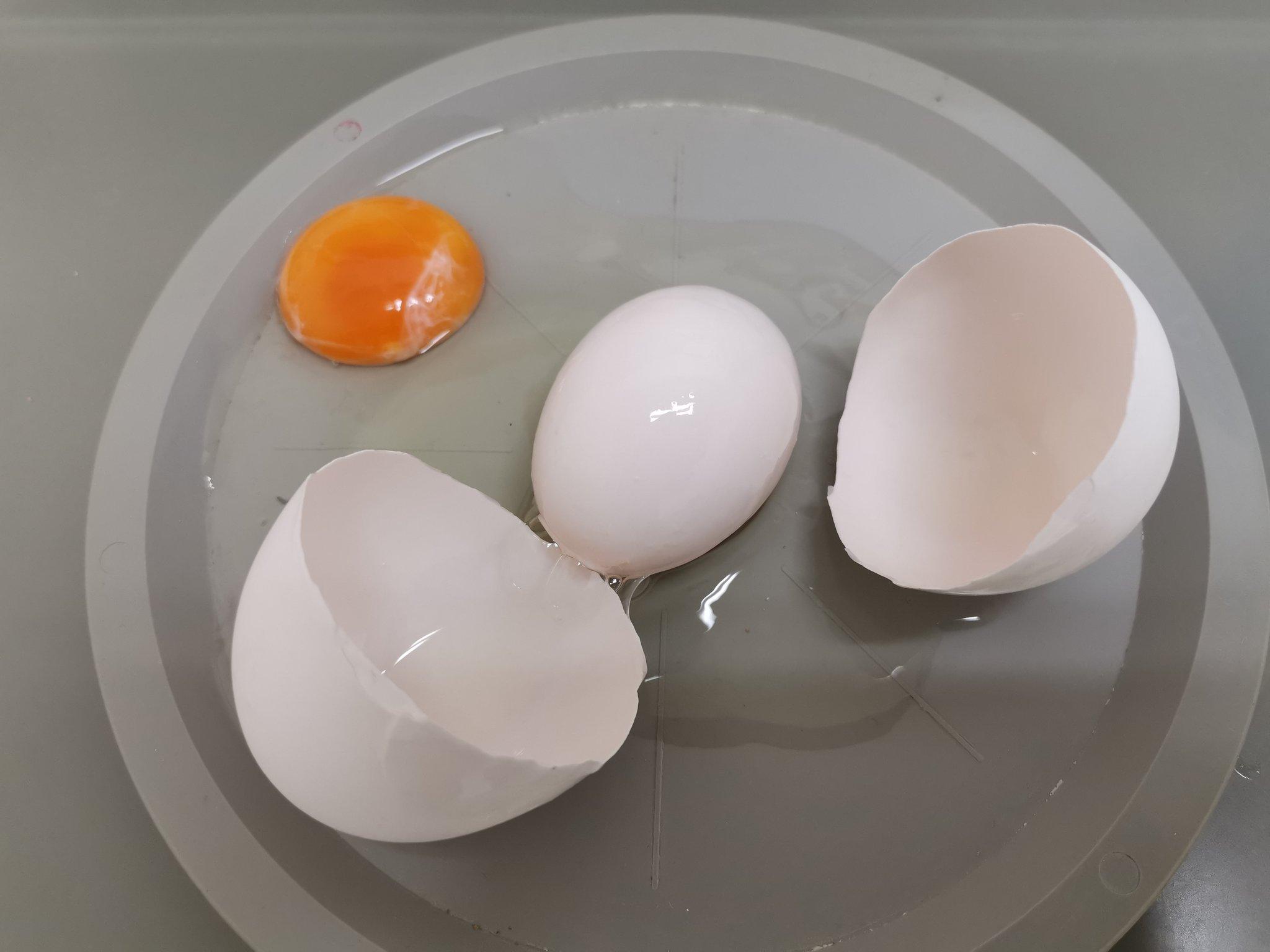 2年近く卵を割ってきましたが、ニ重卵は初めて見ました。卵の中に卵がある(産卵できず、卵の周りに更に卵が形成された状態)。不適合卵ですので市場には流通しません、因みに154gありました。