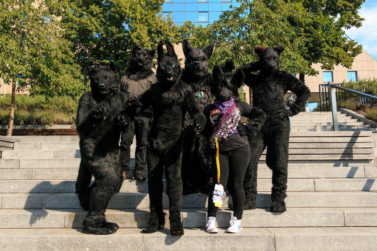It's #FursuitFriday and #BlackFriday   @Sharpecostumes  @DarkFaolan / @Ysegrim / @DuamutefFur   @CleanerWolf   21.08.2015  @estrelberlin   #Berlin   @eurofurence   #EF #EF21 #Eurofurence #Furry #Fursuit #Furcon  #BlackFriday2019  Video Project:  @furryfreestyle<br>http://pic.twitter.com/5v9o4svd1a