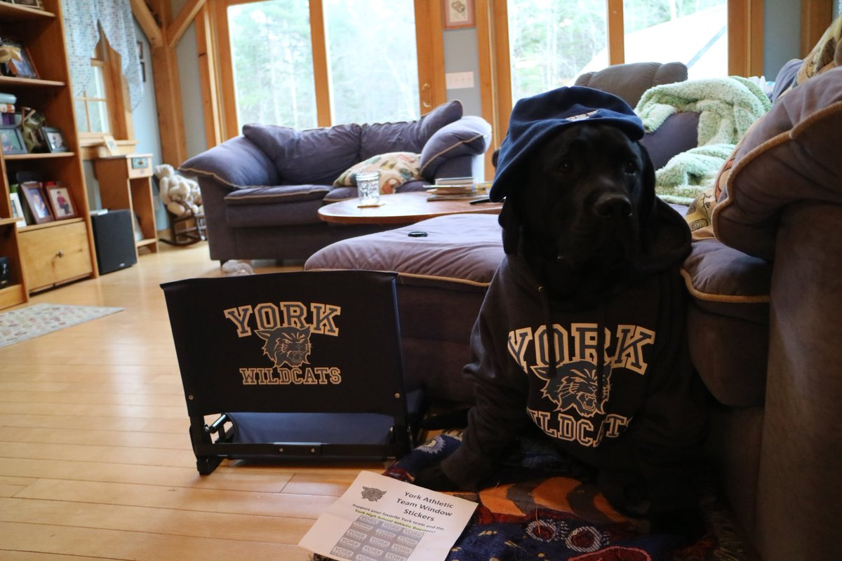 test Twitter Media - It's Black Lab Friday again! Get a start on your Christmas shopping for your Wildcat fans at our online store where you will find something for everyone in every sport! Take advantage of our 10% sale using coupon code BOOSTERS10 until Monday Dec. 9th https://t.co/sIBykzX6FQ https://t.co/GywAzbRbep