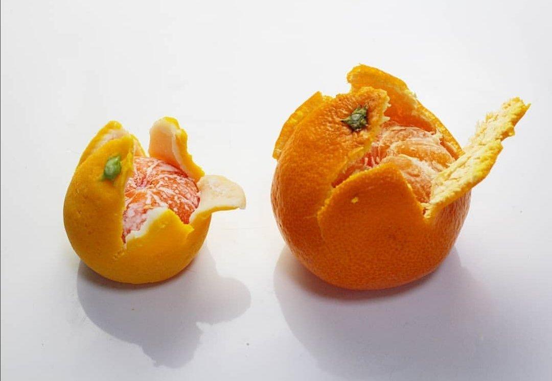 和菓子です!と書いてあっても、本物のミカンにしか見えない上生菓子がすごい!