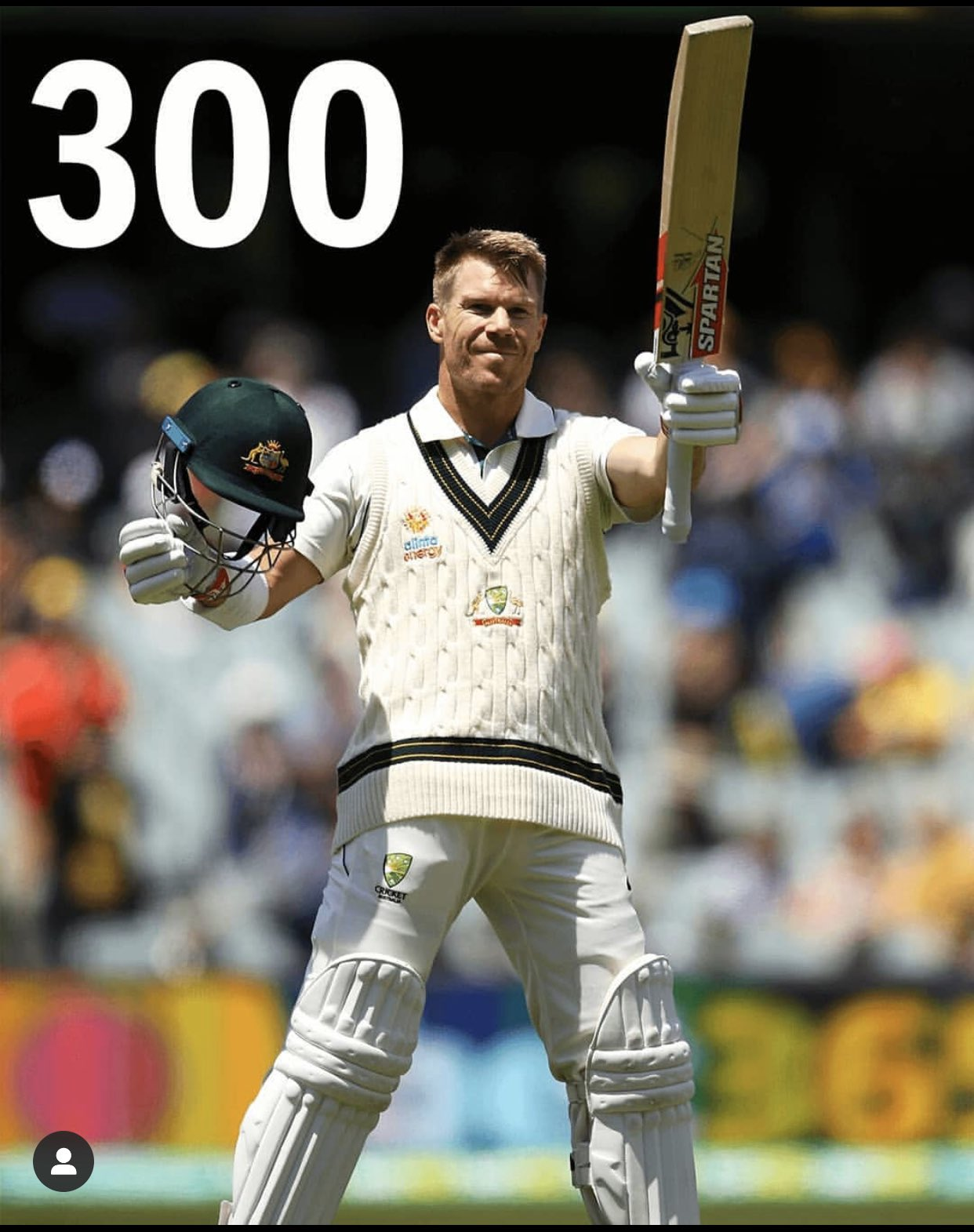 David Warner 335 runs not out