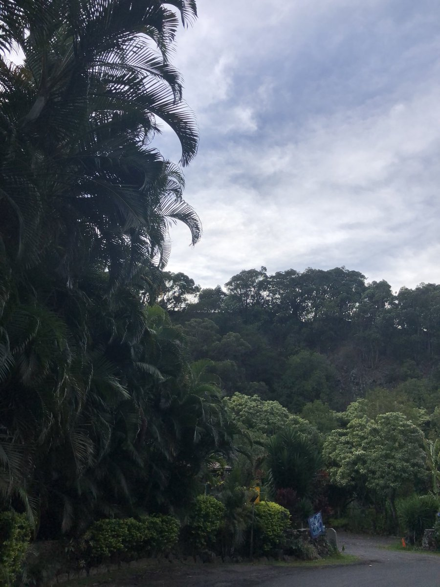 test Twitter Media - Mostly overcast and cool at the sacred garden in Makawao. #cmweather #Maui #sacredgarden #Makawao #Mauinokaoi https://t.co/Q29vB536MO