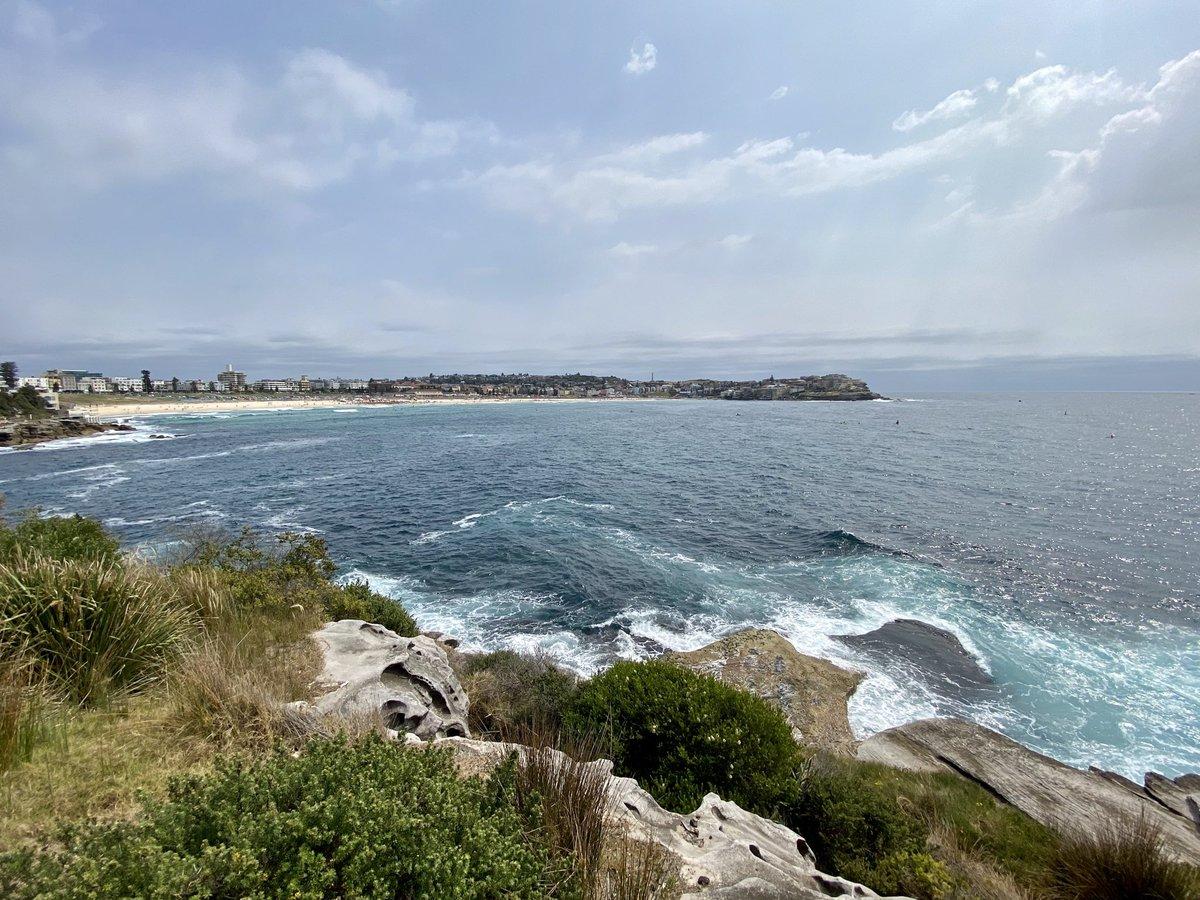 Exploring the beautiful Bondi Beach area this morning in Sydney.
