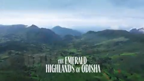 #Odisha's pristine highlands are a filmmaker's dream frame. From spectacular hills in Koraput & the valleys of Kandhamal to chirpy birds at Mangalajodi, the state's serene beauty is a treat for any artist. Come, find your best shot in the #HighlandsOfOdisha