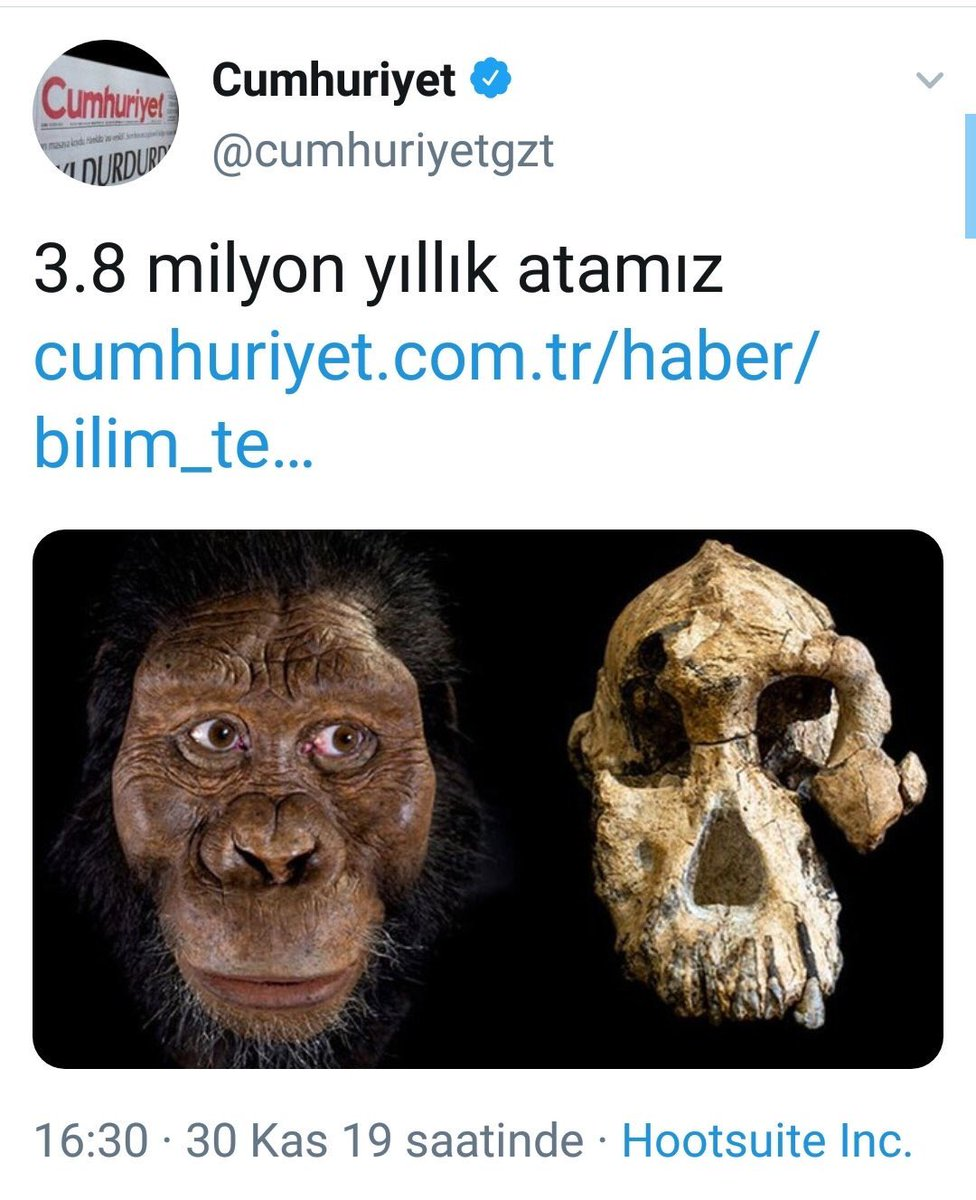 3.8 milyon yıllık atamız ile ilgili görsel sonucu