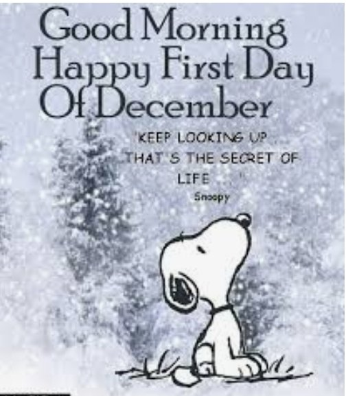 #Good #Morning #Celebrating #December #yoga #iceskating #latin #dancing #Christmas #Gala #Toronto