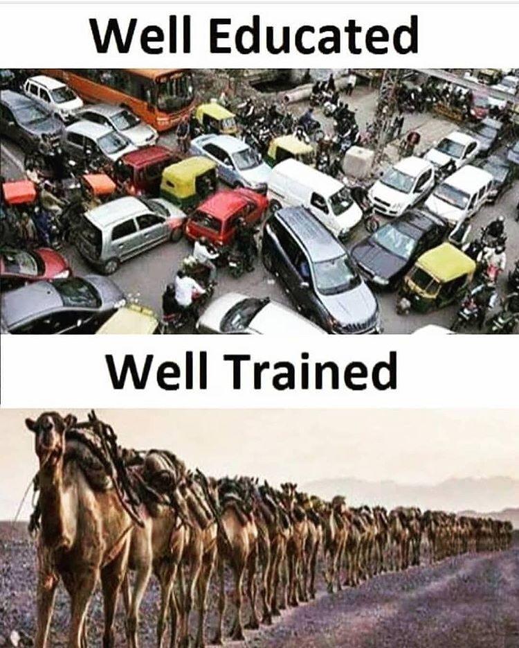 Well educated vs well trained  #programming  #coding #programmer #programminglife #coder #javascript #fullstackdeveloper #codingmemes #programmers #cplusplus #programmingisfun  #developer #coders #neuralnetworks #html #webdeveloper #programmerslife #css #python #compiler #python3<br>http://pic.twitter.com/7u9Z1MU2Ym