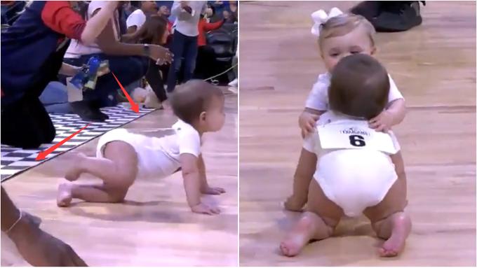 【影片】太可愛了!鵜鶘中場秀上演嬰兒競速賽,這戲劇性的結尾怕是所有人都沒想到!