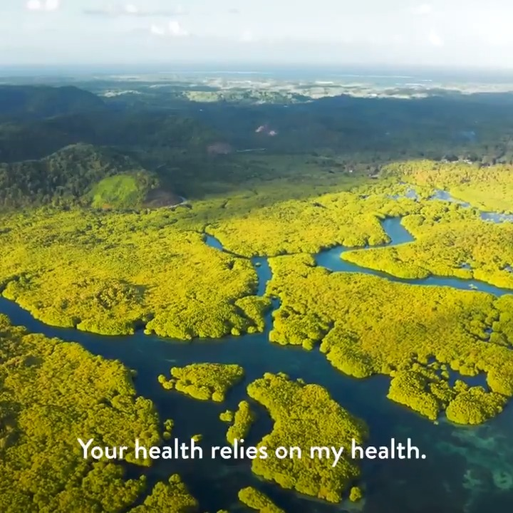 Your health relies on my health. Your life relies on mine. I am plants. I am life. 🌾🌺🌴🍂🌱 In the International Year of #Plant Health #IYPH2020, @FAO reminds us that protecting plants is protecting life. #Biodiversity2020 @ippcnews