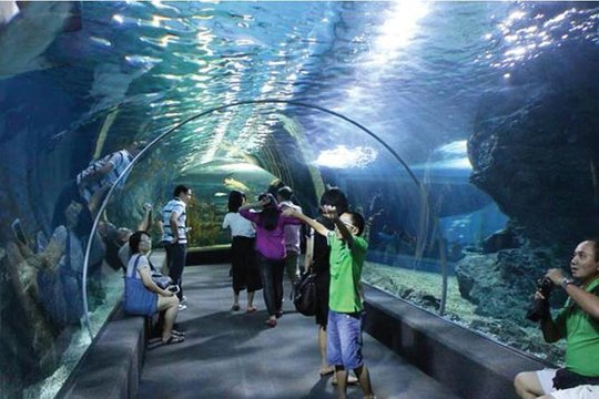 Maharashtra CM Uddhav Thackeray has proposed the idea of building a world-class multilevel aquarium on Mumbai on the backdrop on Siam Ocean World in Bangkok @OfficeofUT @MahaDGIPR @tourismgoi @TourismGoa @mtdc_official  #bankok pic.twitter.com/oI7LXslAVe