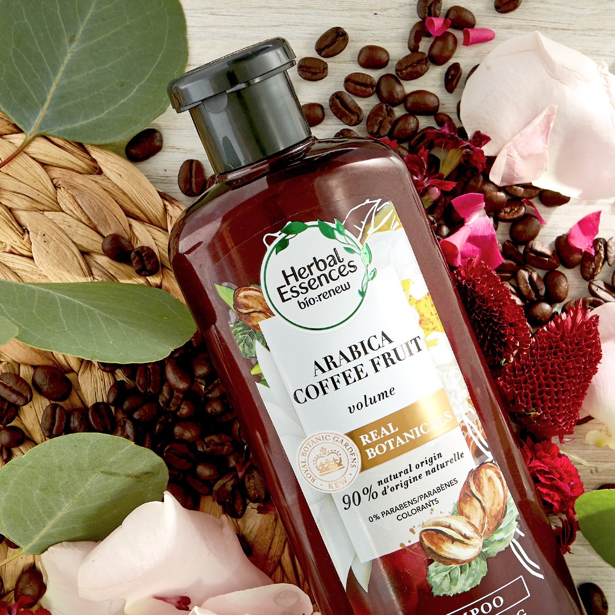We know you'll love our Arabica Coffee Fruit Collection a Latte! ☕ It'll leave your hair soft and full of volume, plus it has real botanicals endorsed by the Royal Botanic Gardens, Kew @KewGardens. https://t.co/mRaOOMM4Wb