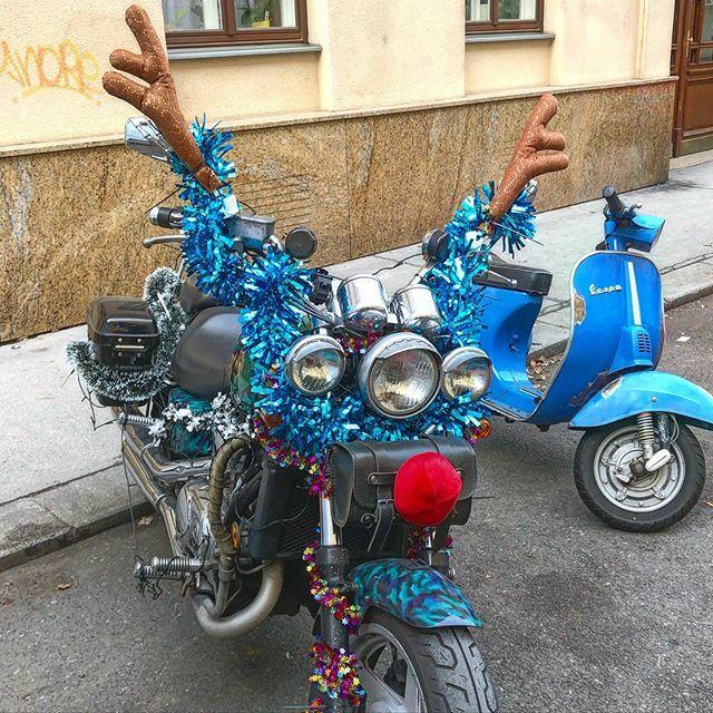 Rudolph ist that you? #reindeer  #christmasvibes  #motorcyclesofinstagram  #vienna  #wienstagram  #rudolphtherednosedreindeer