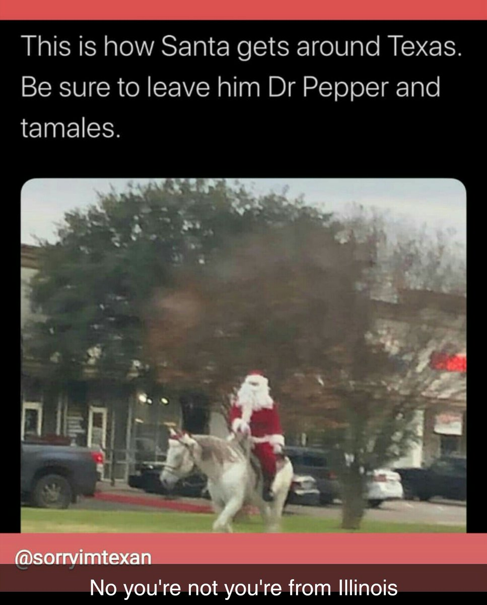 """""""Texas Girl"""" posted this meme.   Bitch we have Dr Pepper and Tamales and Horses in Illinois. I can look out both my parents and best friends house and see horses while eating Tamales and drinking Dr Pepper pic.twitter.com/TFb2rVQp3T"""