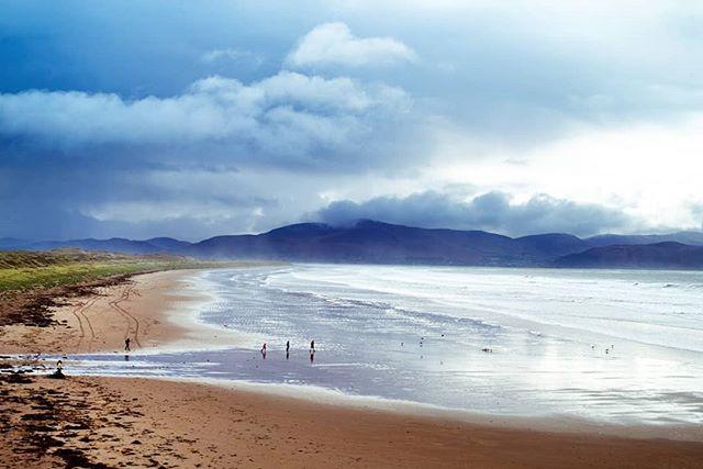 Reposting @scott.wurzel: - via @Crowdfire  Inch Beach, County Kerry, Ireland . · · · · #landschaftsfoto #urlaub #insta_ireland #natur #nature #wanderireland #landscapephotography #strand #travelphotography #holiday #beaches #landschaftsfotografie #instaireland #travelerpic.twitter.com/rRZCzlumpr