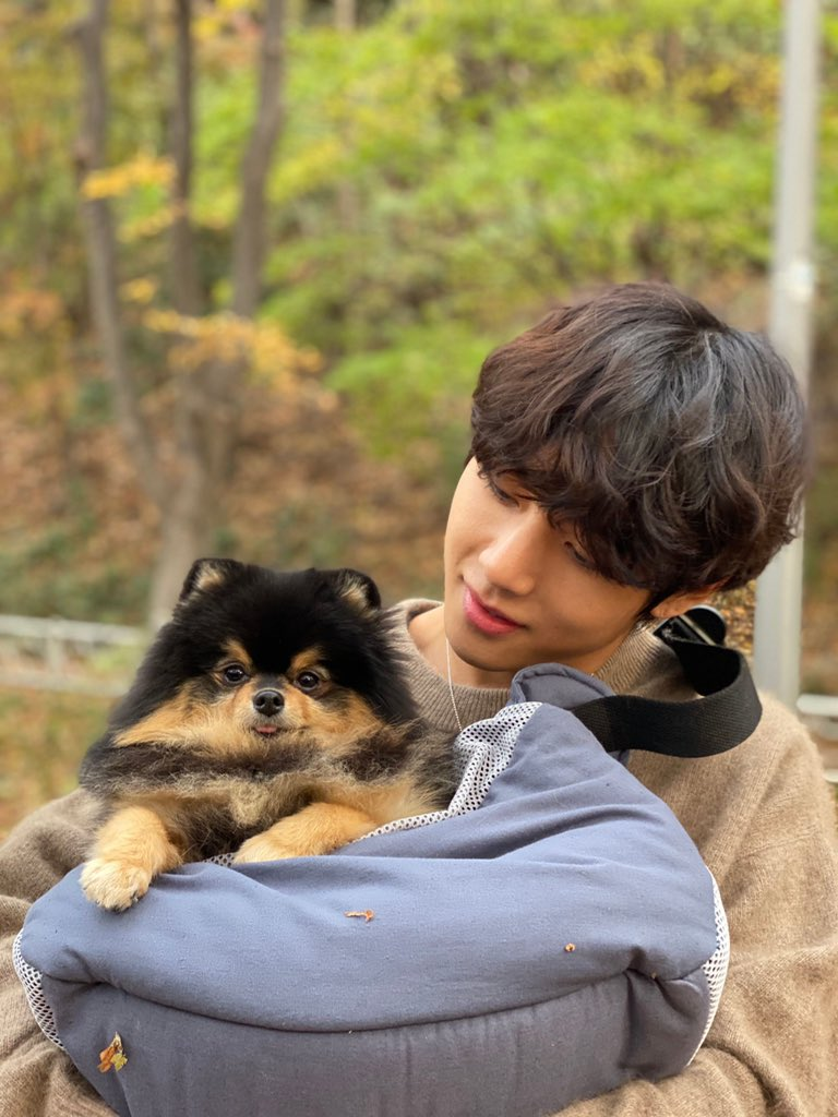 My baby tiger and baby pup reunites 🐯🐶 #TaehyungYeontan #BTSWins10s @BTS_twt https://t.co/HB1xcKzx5F