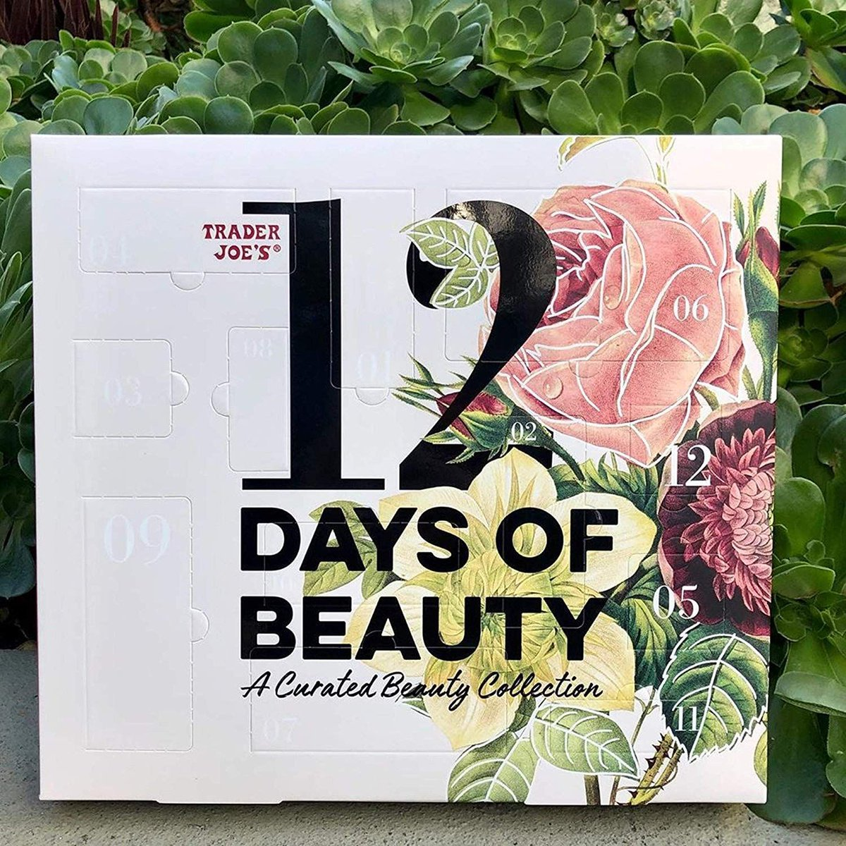 Get your #TraderJoes 12 Days of Beauty for #Christmas!   #beauty #skincare #greenbeauty #holidaybeauty #Christmasbeauty #naturalskincare
