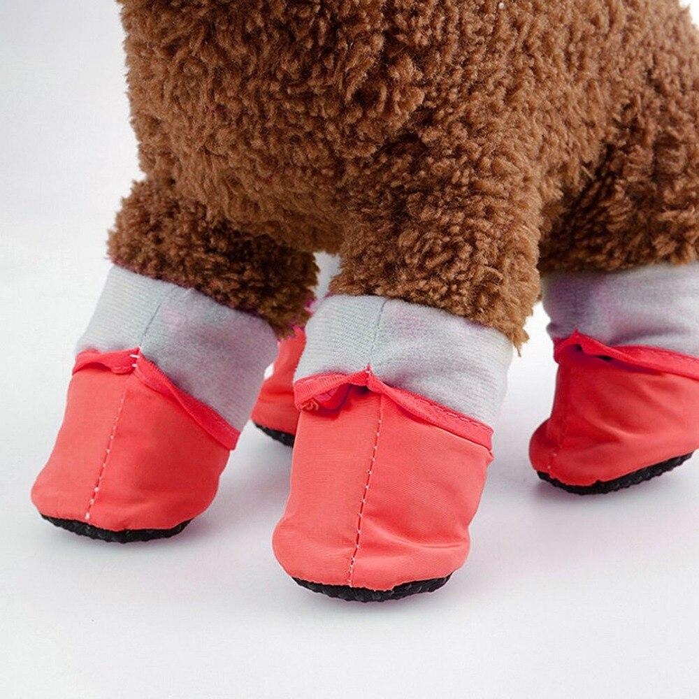 #lovecats #lovepuppies Warm Waterproof Winter Dog Shoes https://fiditoboutique.com/warm-waterproof-winter-dog-shoes/…pic.twitter.com/4pv9NB9nxR