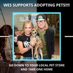 Image for the Tweet beginning: Wes Supoorts Adopting Pets!!!! Go