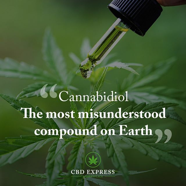 Have you had a chance to check out our CBD marketplace we have all the top brands and vendors?  Click the link in our bio to check it out.     #cbd #cbdheals #cbdfacts #cbdoil #cbdlife #cbdmovement #cbdproducts #cbdcures  #cbdforathletes  #cbdisolate #cbdhealth #mctc…pic.twitter.com/ocvEM5EDR7
