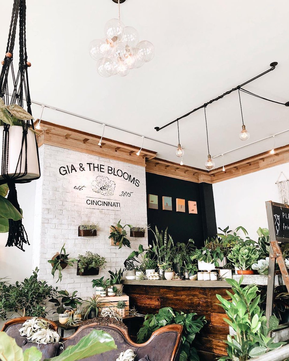 Plant shop > coffee shop!  #didyouknow research at  the Royal Botanic Gardens, Kew @kewgardens supports the conservation of plants? Check out today's plant shop inspo @giaandtheblooms on IG https://t.co/pyGV75q518