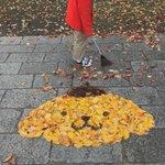 落ち葉でこんなことが!?落ち葉でポムポムプリンを再現!