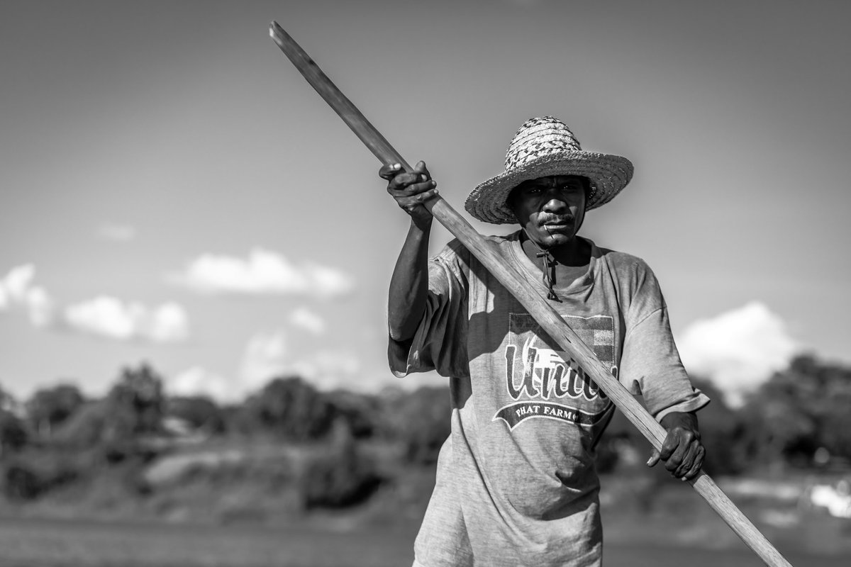 This was our transport officer for the day It Costs k1 to cross the Zambezi River to the other side This man does this all day every day.. #watertransportation #canoe #man #photography #85mm18 #blackandwhite #ruleofthirdspic.twitter.com/GJ4mT6brrU
